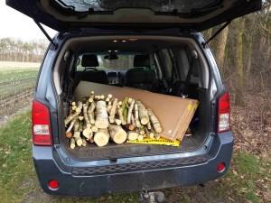 Kofferbak Pathfinder met hout