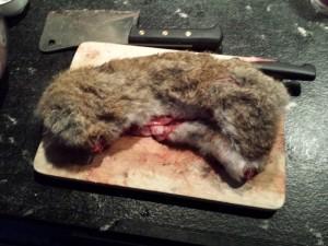 Tussen konijn en vlees in